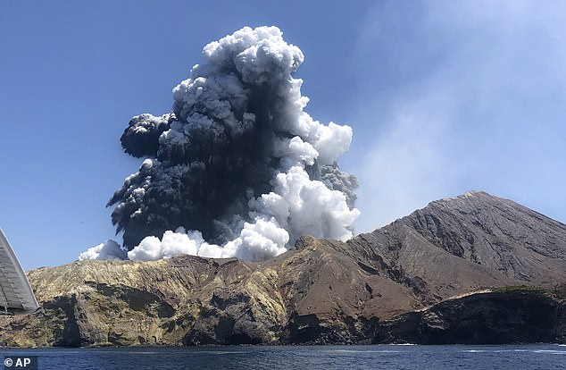 The White Island volcano erupted on December 9 2019, with 47 people trapped on the island leaving 21 dead