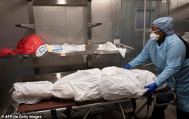 Coronavirus deaths in the United States reached 58,233 on Tuesday night. There have been more U.S. deaths than in the Vietnam War. Pictured is transporter Morgan Dean-McMillan preparing the body of a COVID-19 victim at a morgue in Montgomery county, Maryland