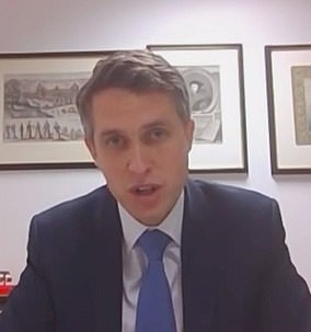 Gavin Williamson, pictured during an Education Select Committee hearing