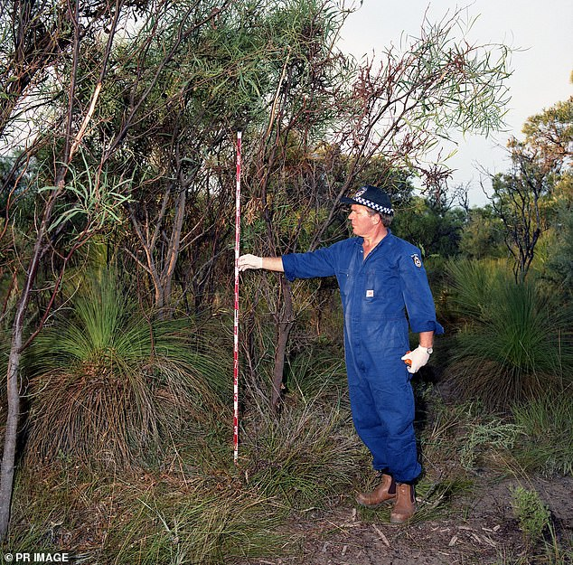 A forensic police officer measures where tree branches have been torn off near the area where Ciara Glennon's body was dumped at Eglington, about 40km north of Perth, in 1997