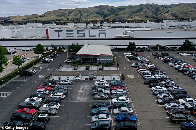 Pictured: An aerial view of the Tesla Fremont gigafactory in California. To add insult to injury, the electric car maker was also left off the S&P 500 Index