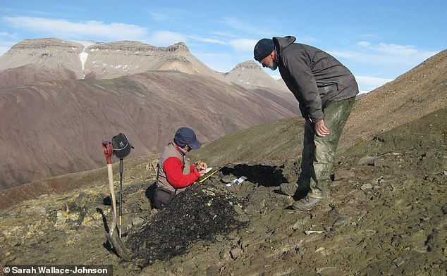 Prof John Marshall (left), taking samples in Spitsbergen. Those samples helped them discover pores that were damaged by UV radiation