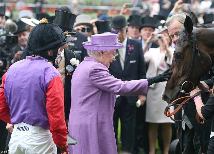 Her Majesty smiles while tapping her Estimation horse after winning the Gold Cup on Women's Day at the Royal Ascot in June 2013