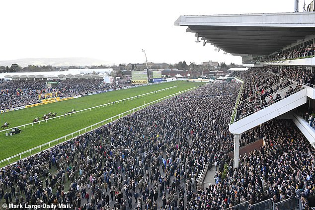 Scientists have dubbedCheltenham Festival (pictured) a 'disaster' and claim it accelerated the spread of coronavirus in the UK after 260,000 people flocked to the racecourse just days before lockdown began