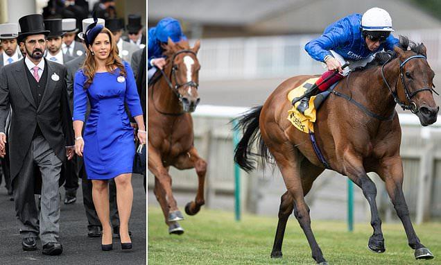 Sheikh Al-Maktoum's racehorses became part of venomous divorce battle