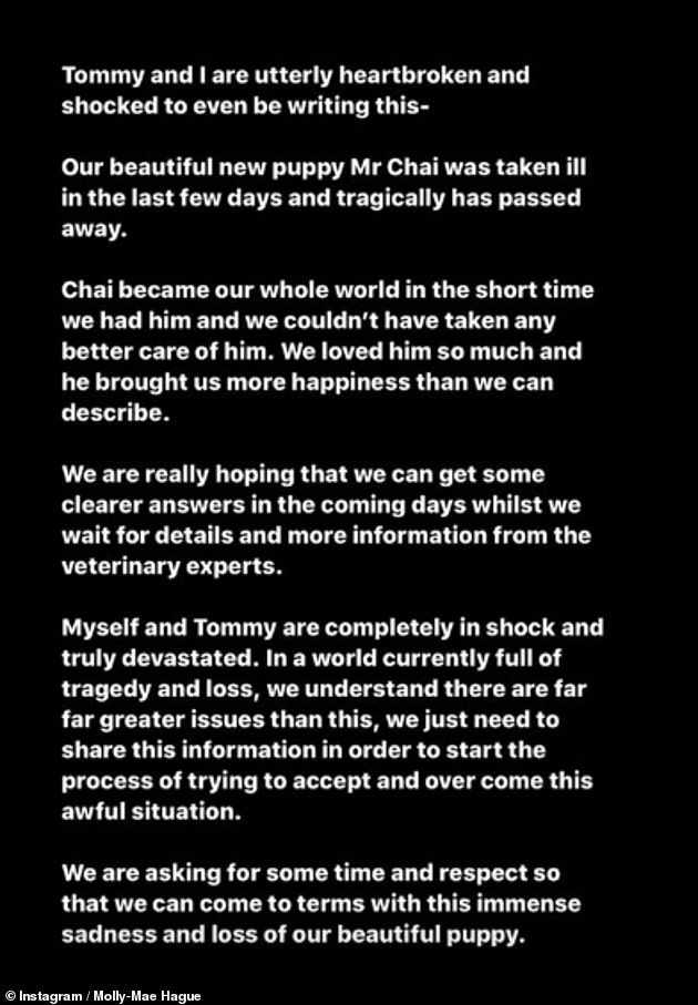 Heartbroken: The reality star announced Mr Chai had died in a heartbreaking statement posted just six days after welcoming the pup into her home