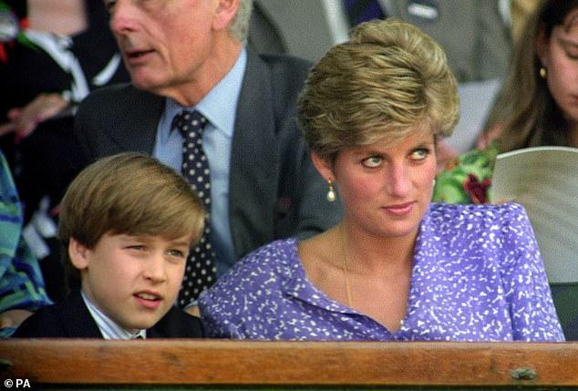 L'auteur royal Penny Junor a observé que feu la princesse Diana `` partageait énormément de sa misère avec William '' (photographié ensemble à Wimbledon en 1991)