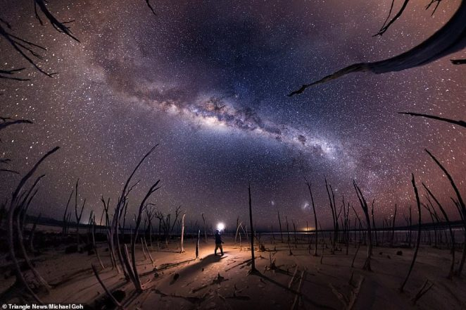 'Nightmare' by Michael Goh, a self-portrait captured atDumbleyung Lake, a salt lake located in Western Australia. The trees in this picturetrees have died due to the salt levels.Goh said: 'For this image, the dead trees gave me the idea of capturing them clawing up at the sky – the fish-eye panorama turned out better than expected, as the trees almost looked like tentacles. The location is very dark, so with no moonlight available, I used my self-portrait style with the figure holding the light (now a bit clichéd) to create more depth in the image as a solitary figure standing amongst the dead trees.