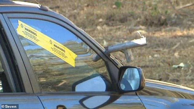 Herleen Koen, 63, died about two weeks after a piece of a trampoline slammed into her car's windscreen near Mount Tamborine in August last year