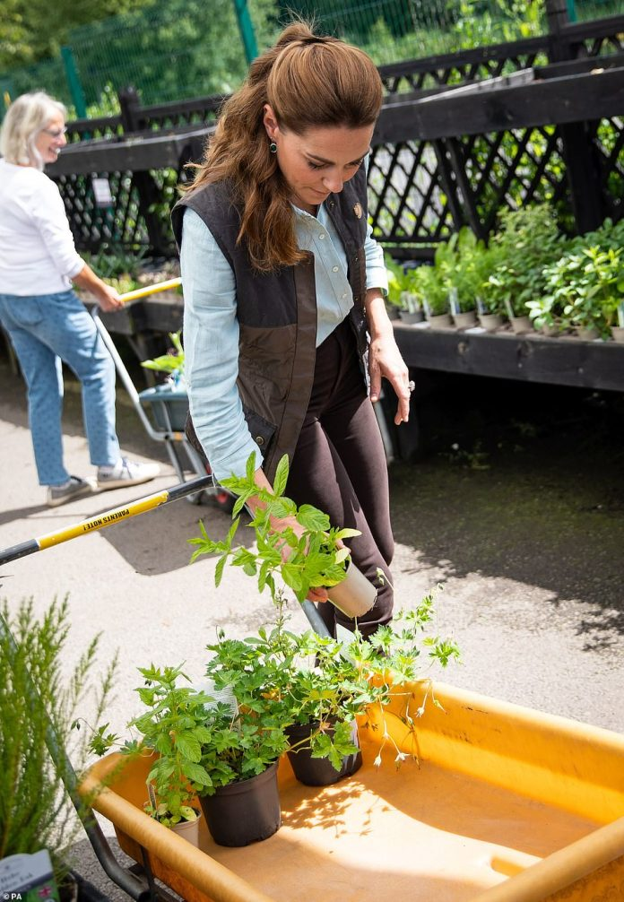 The Duchess of Cambridge loads plants and herbs into an orange cart at the Fakenham Garden Center as she purchases plants and herbs