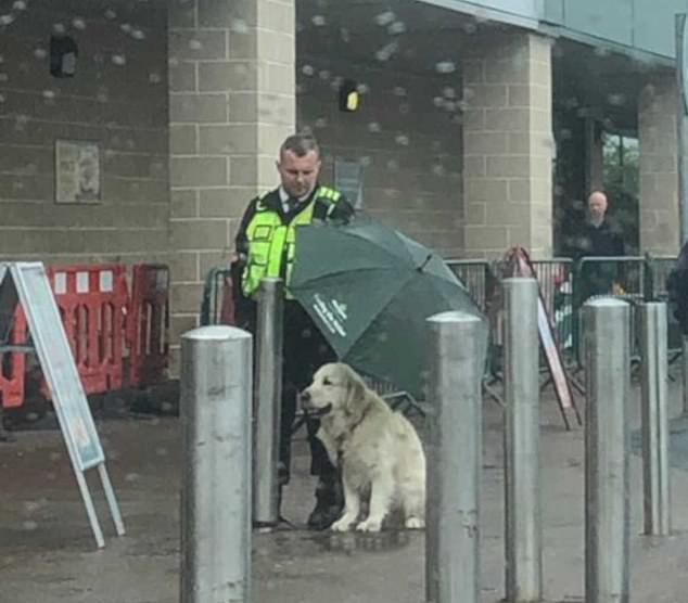 Ethan Dearman sheltered Freddie the golden retriever from the rain outside Morrison's in Glasgow on Sunday