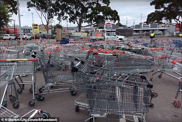 Dumped trolleys gathered in a car park in Marion.The City of Marion in Adelaide's southwestern suburbs has approved a new by-law that will allow them to fine offending people and businesses to be fined by the council