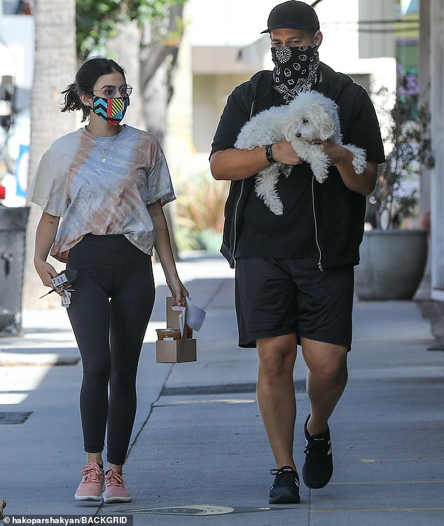 Dog carrier: A man carried Elvis while walking next to Lucy