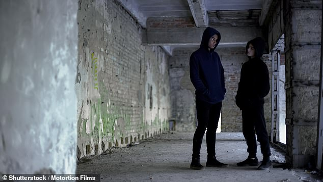 Miss Longfield said that if action is not taken quickly then it could result in a lost generation of teens who could drop out of school and get into trouble involving gangs and criminals