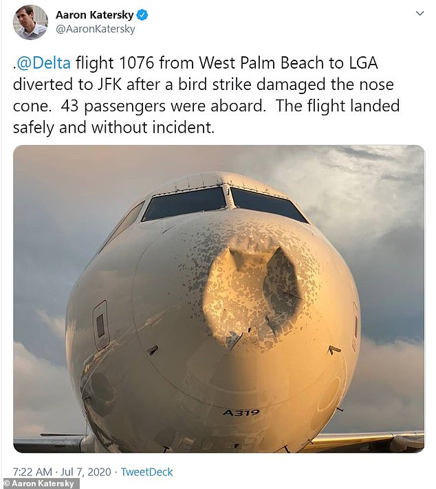 A Delta flight from Florida was forced to make an emergency landing at John F. Kennedy Airport in New York after a bird strike damaged the front of the aircraft