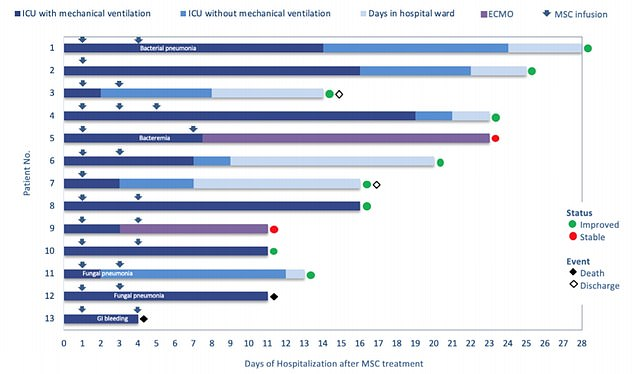 How the 13 patients in the pilot study fared on a timescale - the bottom two died after just four and then 11 days