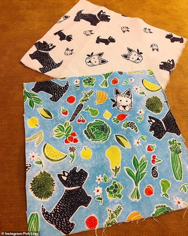 Exciting!One design was printed on a light blue fabric with several vegetables while the other black and white print featured dogs
