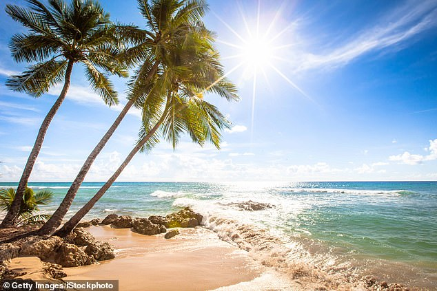 Island in the Sun: Simon usually spends the winter months on the Caribbean island on his superyacht, but is now considering permanent residence, says an insider