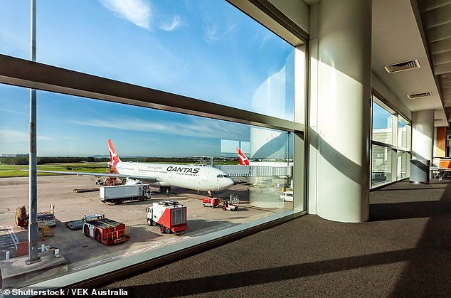 Qantas have made it easier for frequent flyers to use their points in a loyalty program (stock image)