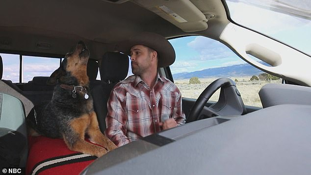 Truck performance: Country singer Chris Petersen sang Chris LeDoux's Look At You Girl from the front of his pickup truck in Cedar City, Utah along with his dog