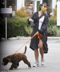 Jordana Brewster dons a patterned face mask as she heads out on coffee run with beloved pup Endicott