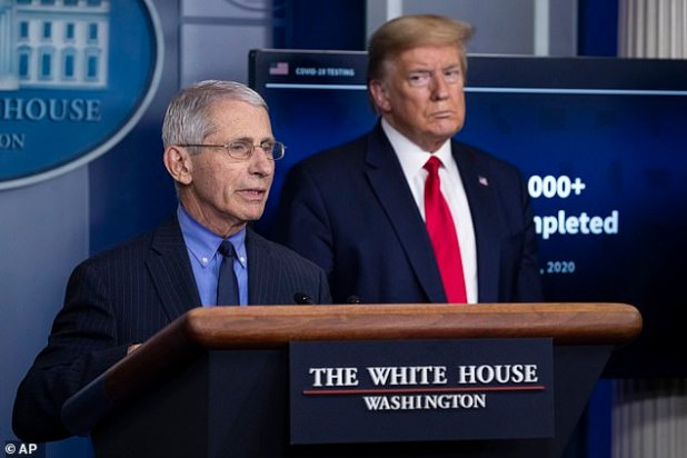Trump and Fauci's heads are butted, as they led a coronovirus briefing in the spring and disagreed on how to deal with the epidemic and what measures to support.