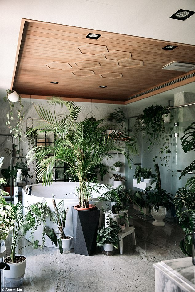 One of Adam's most spectacular makeovers is his family's bathroom in Taiwan where he recently transformed into a luscious jungle bathroom of his dreams