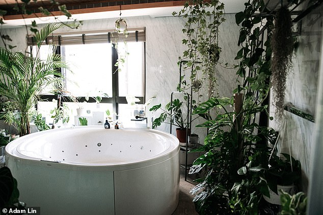 The young man said he spent around two hours furnishing his family's spectacular bathroom