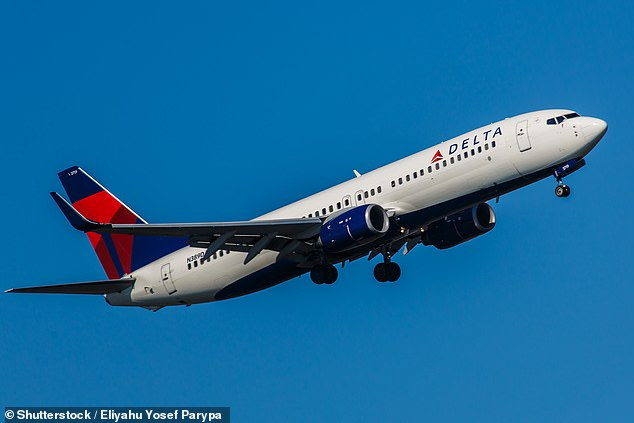Delta Air Lines flight to Atlanta is forced to turn around after 2 passengers refused to wear masks