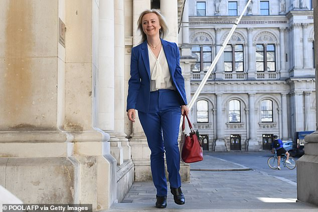 The warning comes despite Ms Truss (pictured arriving at the Foreign and Commonwealth Office to attend the first in-person cabinet meeting since the coronavirus lockdown) unveiled a commission last week to advise on trade deals to come up