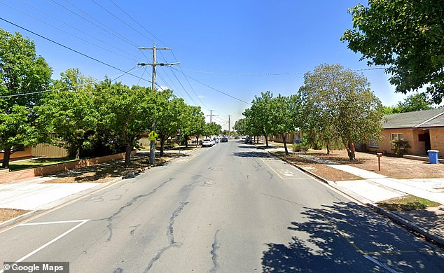 A sexual predator is on the loose after breaking into a woman's apartment on Monash Street at Shepparton, two hours north of Melbourne, in the early hours of Saturday and assaulting her