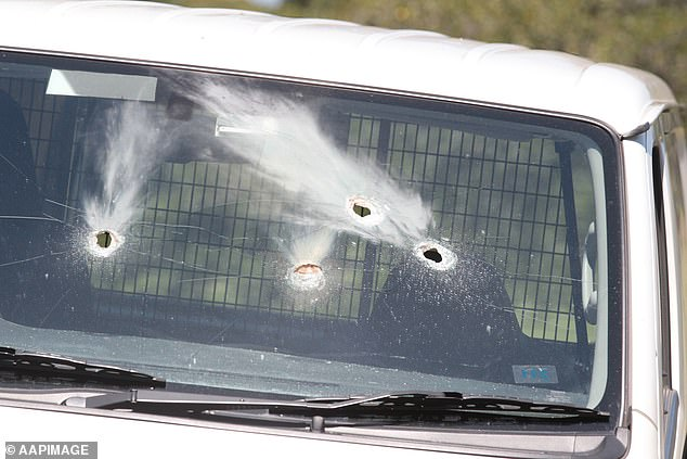 Officer pounced on Paulo and his accomplice as they drove to the organised meet, firing non-lethal bullets through the windshield in the process, before finding guns and $650,000 in the vehicle