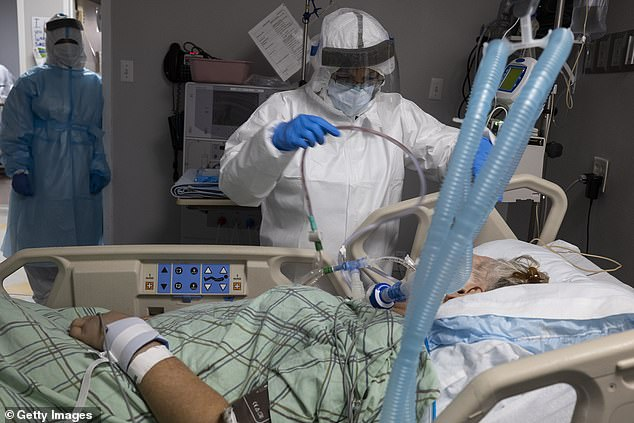 Scientists believe a combination of the two could reverse cytokine storms, which occur when the body attacks its own cells and tissues. Pictured: Members of the medical staff at United Memorial Medical Center in Houston, Texas, treat a patient in the COVID-19 ICU, July 28