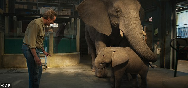 New project: Angelina voices an elephant and produces the Disney + movie