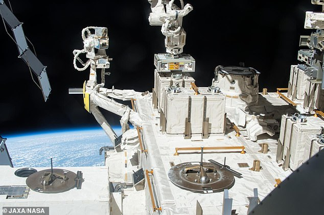 Researchers responsible for the Japanese Tanpopo experiment on the ISS say the discovery means alien life could be common - hopping from planet-to-planet