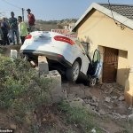 Driver crashes his car into a house because a chicken crossed the road