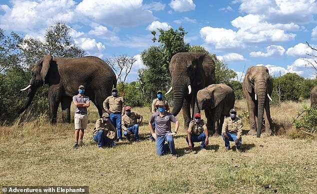 Sean (middle) and the staff have, like so many businesses, learned to adapt and diversify during the pandemic. For Adventures with Elephants, visitor income goes directly towards feeding the herd