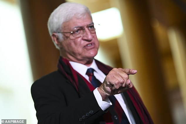 Independent MP Bob Katter speaks to the media during a press conference at Parliament House about foreign interference in Australian education institutions