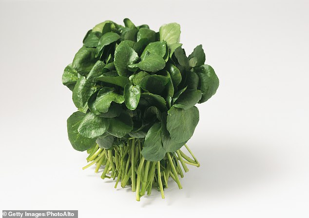 Gram for gram, watercress has almost as much iron as stewed extra-lean minced beef [File photo]