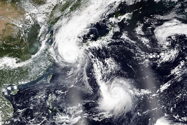 Based on the last known location of the ship it would have been sailing in high winds of 58 knots (107km/h) caused byTyphoon Maysak (pictured over South Korea)
