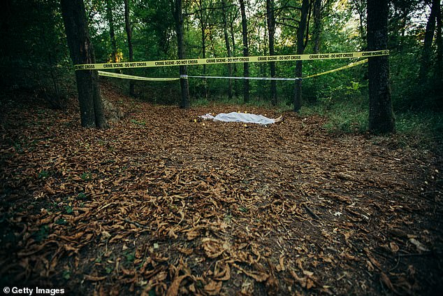 Forensic botanists are investigation how plants show signs of nearby remains, as decomposing bodies release compounds in the surrounding environment. These compounds can change soil composition that in turn alter the look of plants such as leaf color and reflectance