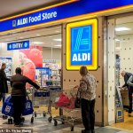 Customers criticise Aldi for selling baskets as part of its weekly Special Buys sale