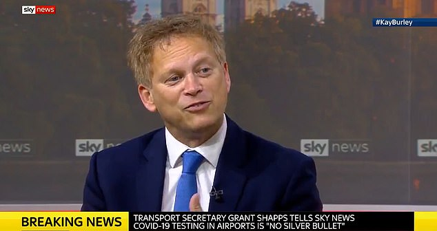 Transport Secretary told Sky News the government was not 'ignoring' desperate warnings that the current draconian curbs could see the 'demise' of the aviation sector