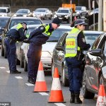 Driver desperate to enter NSW from Victoria allegedly tried to BRIBE border officials