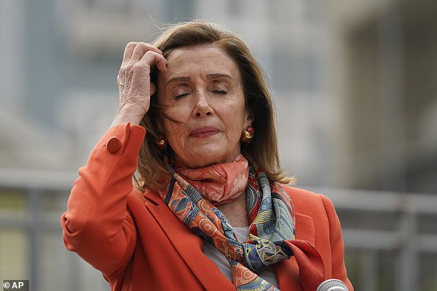 Pelosi (pictured) said in a statement that she had been 'set up' by the salon and asked for an apology