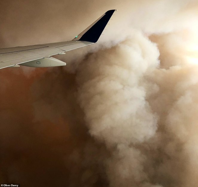 Darcy said that passengers aboard the flight could reportedly smell the smoke from the wildfires inside the cabin