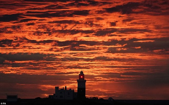 Bookmakers Coral have cut odds on temperatures reaching 86F (30C) to 5/4. Coral spokesman John Hill said: 'School's back but the sun's out and punters believe Britain will bake.' Pictured, Coquet Island this morning