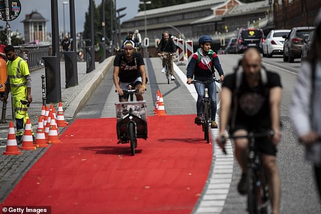 Germany's far-right Alternative for Germany (AfD) filed an urgent motion which argued that the pop-up bike lanes (pictured over Oberbaum Bridge) failed to conform to German traffic law