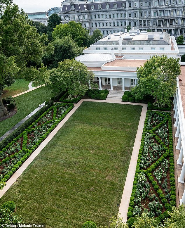Melania Trump unveiled her renovations to the White House Rose Garden last month, completed in time for her to make her case for her husband's re-election when she spoke from there for the Republican National Convention