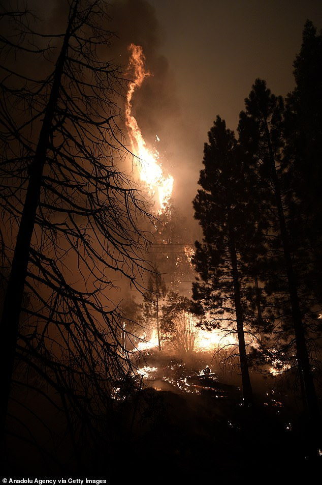 The latest blaze comes as California is already being ravaged by massive wildfires, with more than 14,000 fire fighters currently battling 24 separate blazes. Pictured the Creek Fire in Fresno County